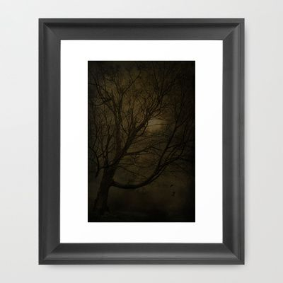 Old Lone Tree Framed Art Print by Emily J Photo Decor  - $36.00