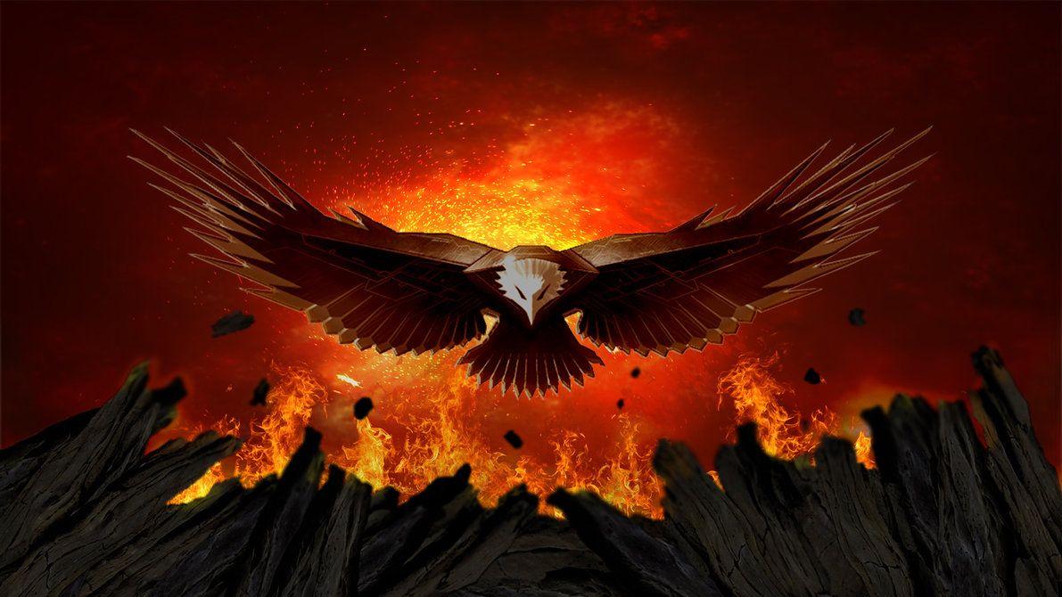 Fire Eagle Wallpaper Eagle Wallpaper Eagle Pictures Animal Wallpaper