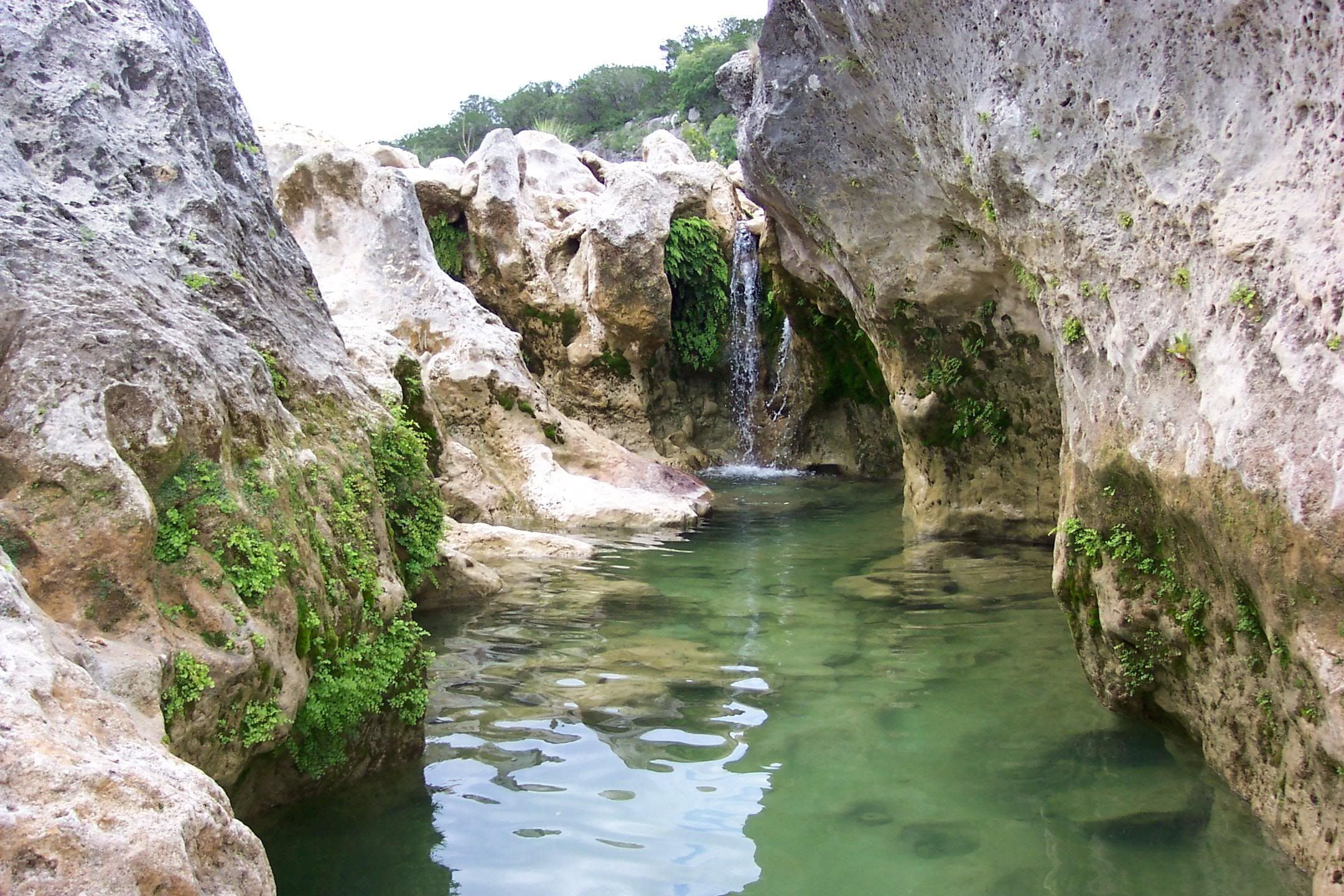 Blanco state park (With images) | State parks, Summer road ...