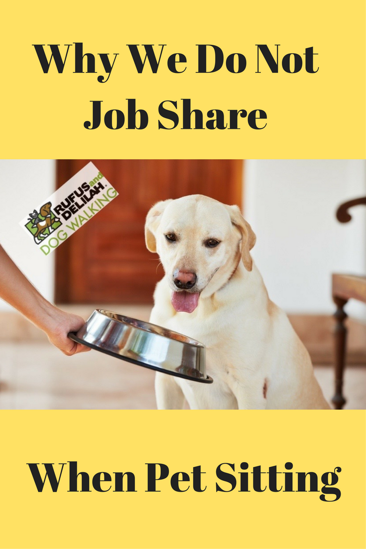 Why We Do Not Job Share When Pet Sitting Pet Sitting Dogs