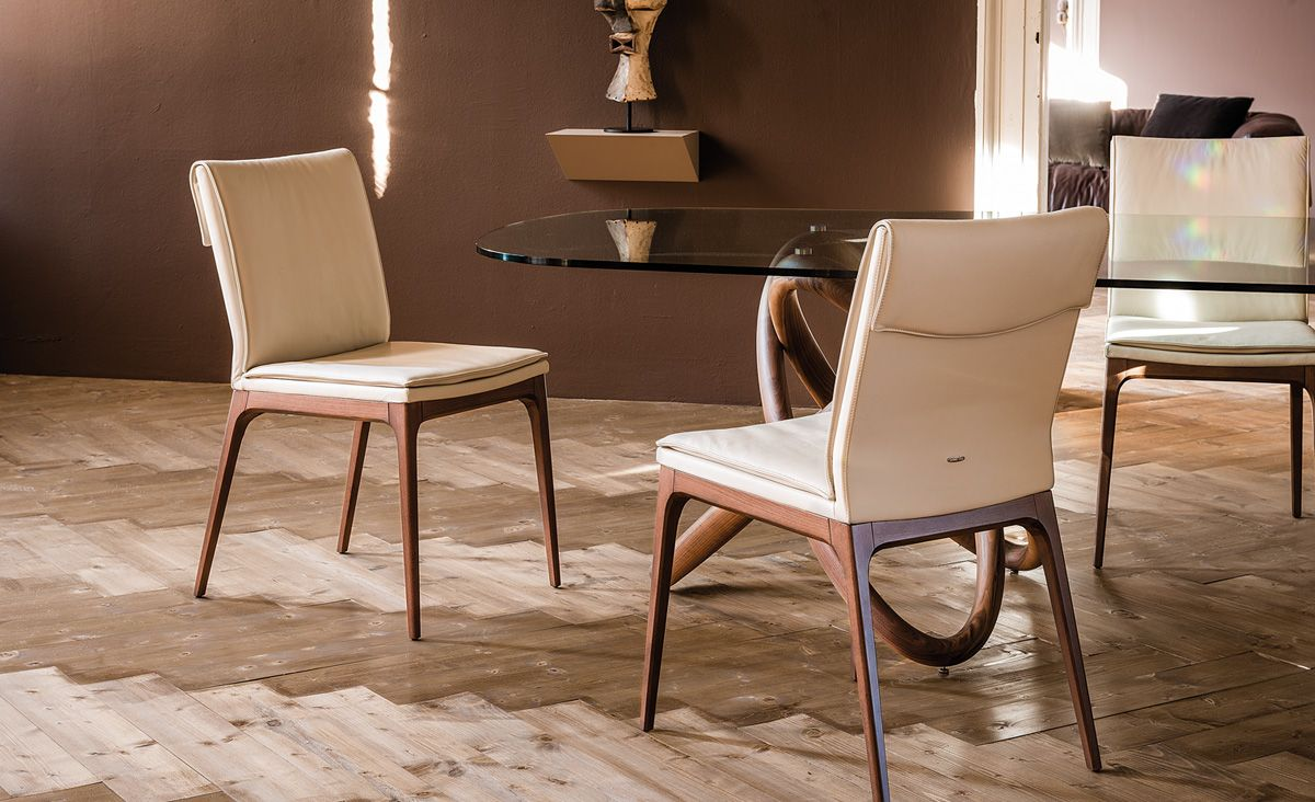 Explore Contemporary Dining Chairs Cafe And More