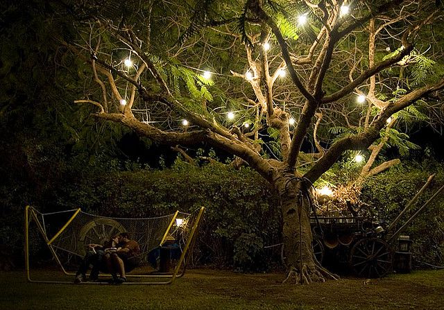 Superior Outside At Night, Beautiful Tree, Romantic Lighting. And A Hammock? Pictures