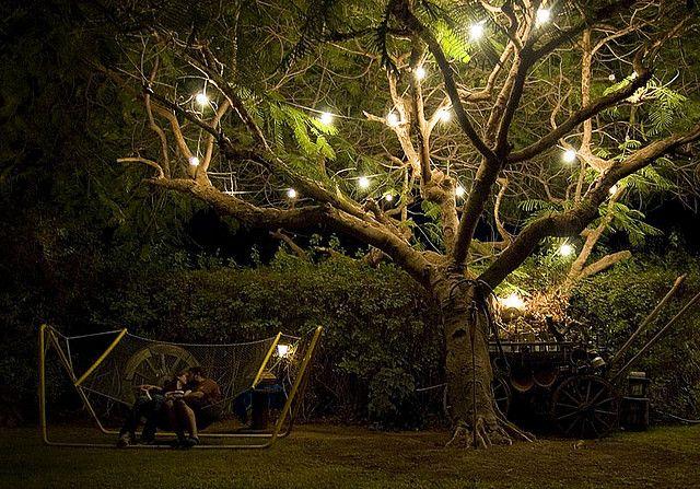 Magical Tree Magical Tree Outdoor Tree Lighting