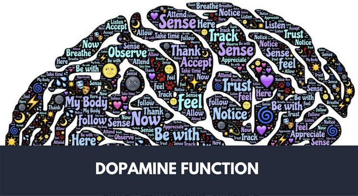 Pin on Dopamine