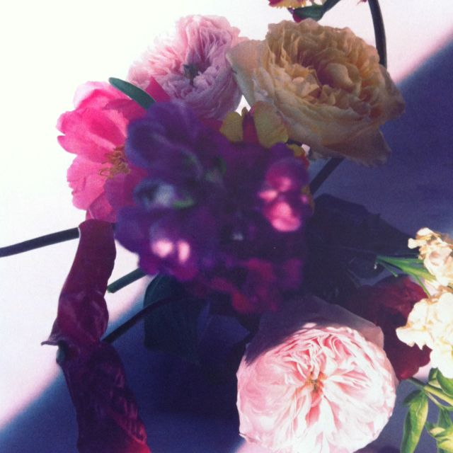 originally photographed by Camilla  Akrans for German Vogue #flowers