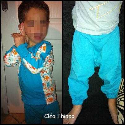 [2010/6] réalisation : 18 hippotamus hoppulainen / missvinie