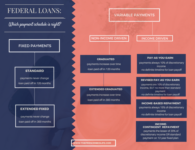 Debtrepayment  Debt Refinancing    Government Loans