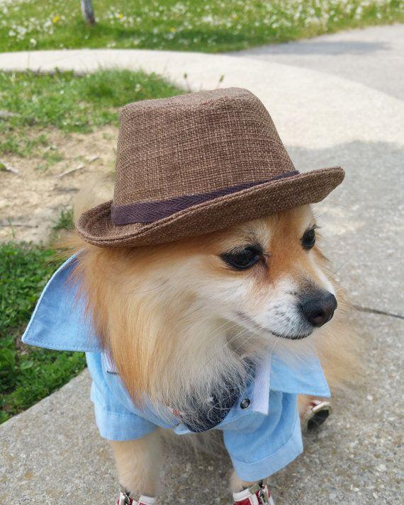 Fedora For Dogs Cats Handmade Dog Hats Dog Caps Summer Hat Cowboy Hat Sun Visor Hat Sun Hat Pet Accessories Dog Hoodies Dog Outfit Dog Hats Handmade Dog Dog Hoodie