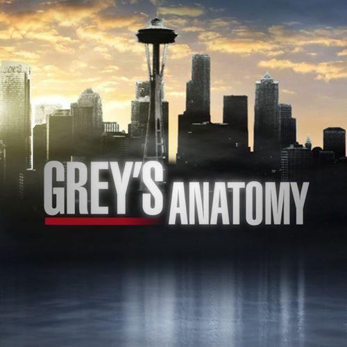 Grey\'s Anatomy: Season 6 | Anatomie und Serien
