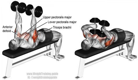 tate press exercise instructions and video rh pinterest ph weight training guide for seniors weight training guide for women