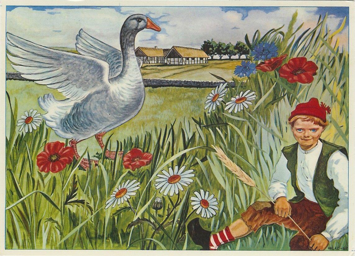 Nils Holgersson Postcard 1962 Painting Selma Lagerlof Illustration