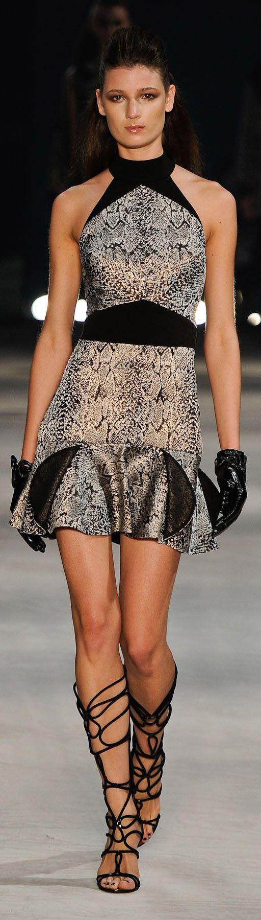 ✪ Iodice ✪ (São Paulo Fashion Week) Brazil Fashion Week 2012 ✪ http://chicquero.com/2012/01/25/happy-birthday-sao-paulo/