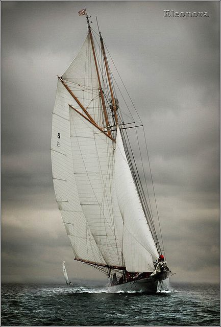 Eleonora |Taken during the Westward Cup off Cowes