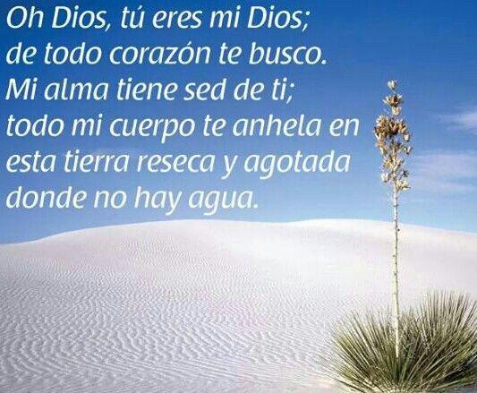 Resultado de imagen para El anhelo de Dios Dios, tú mi Dios, yo te busco,  mi ser tiene sed de ti,