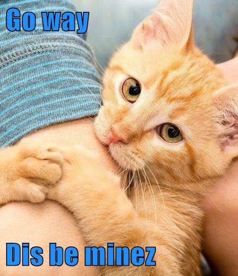 Go way Dis be minez http://cheezburger.com/9022621440