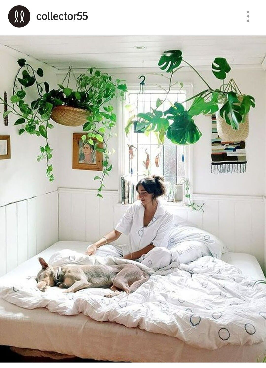 6 Garden Bedroom Ideas, Most of the Incredible and Attractive