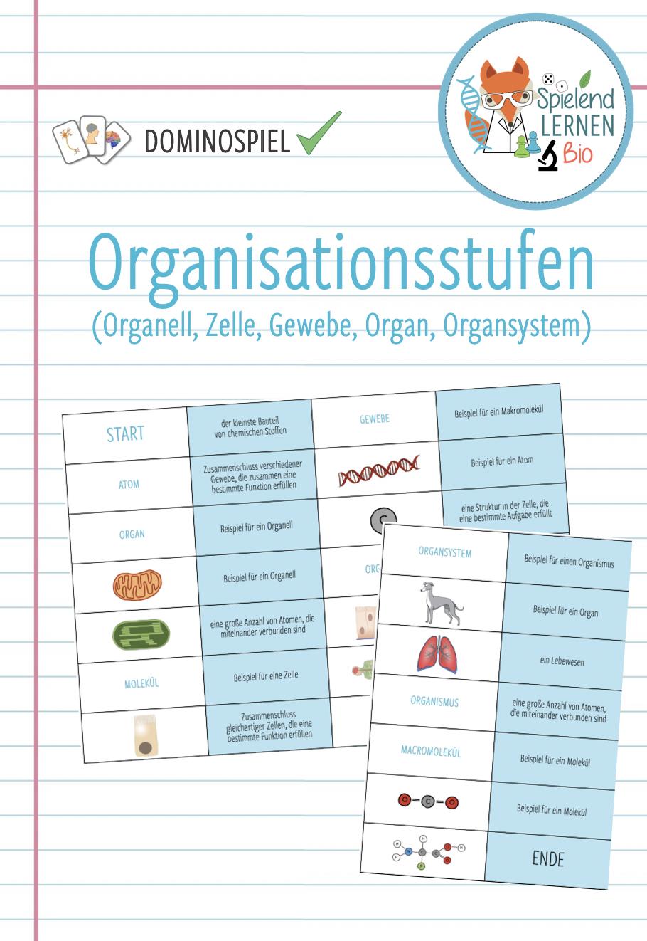 Organisationsstufen Domino Spiel Unterrichtsmaterial Im Fach Biologie In 2020 Domino Spiele Domino Unterrichtsmaterial