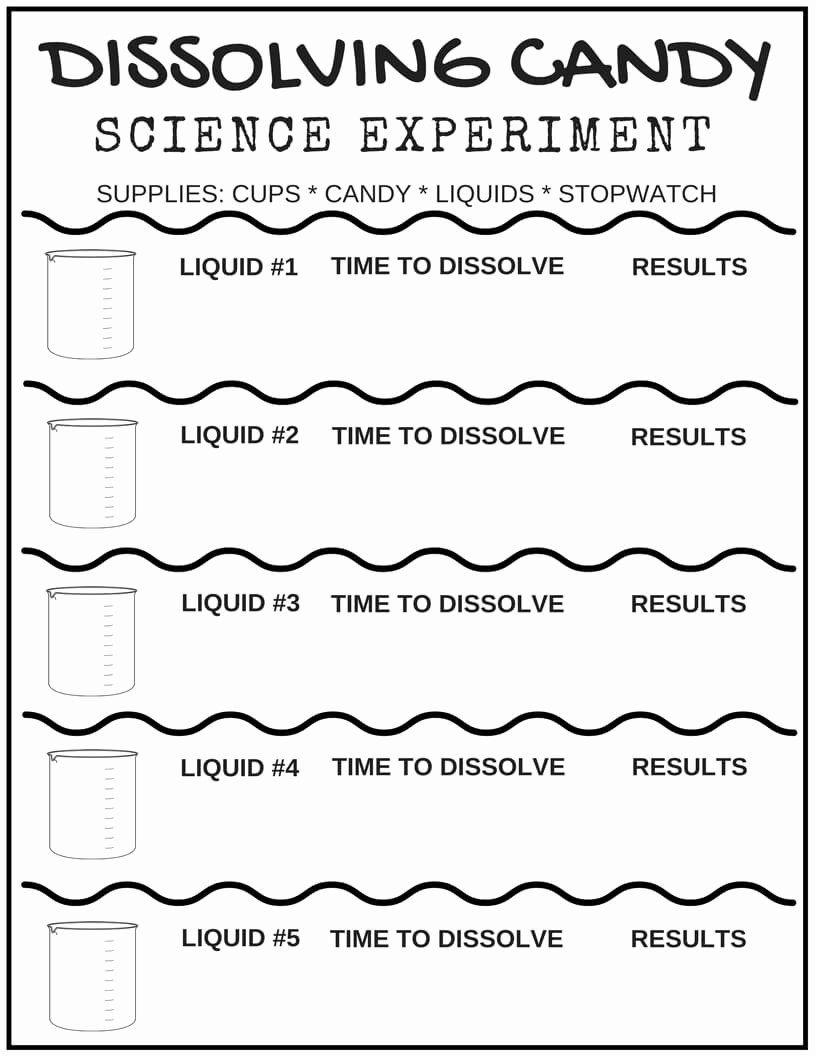 Rock Candy Experiment Worksheet Elegant Free Science Worksheets For Kids Science Worksheets Kindergarten Science Kindergarten Worksheets Kindergarten science experiment worksheet
