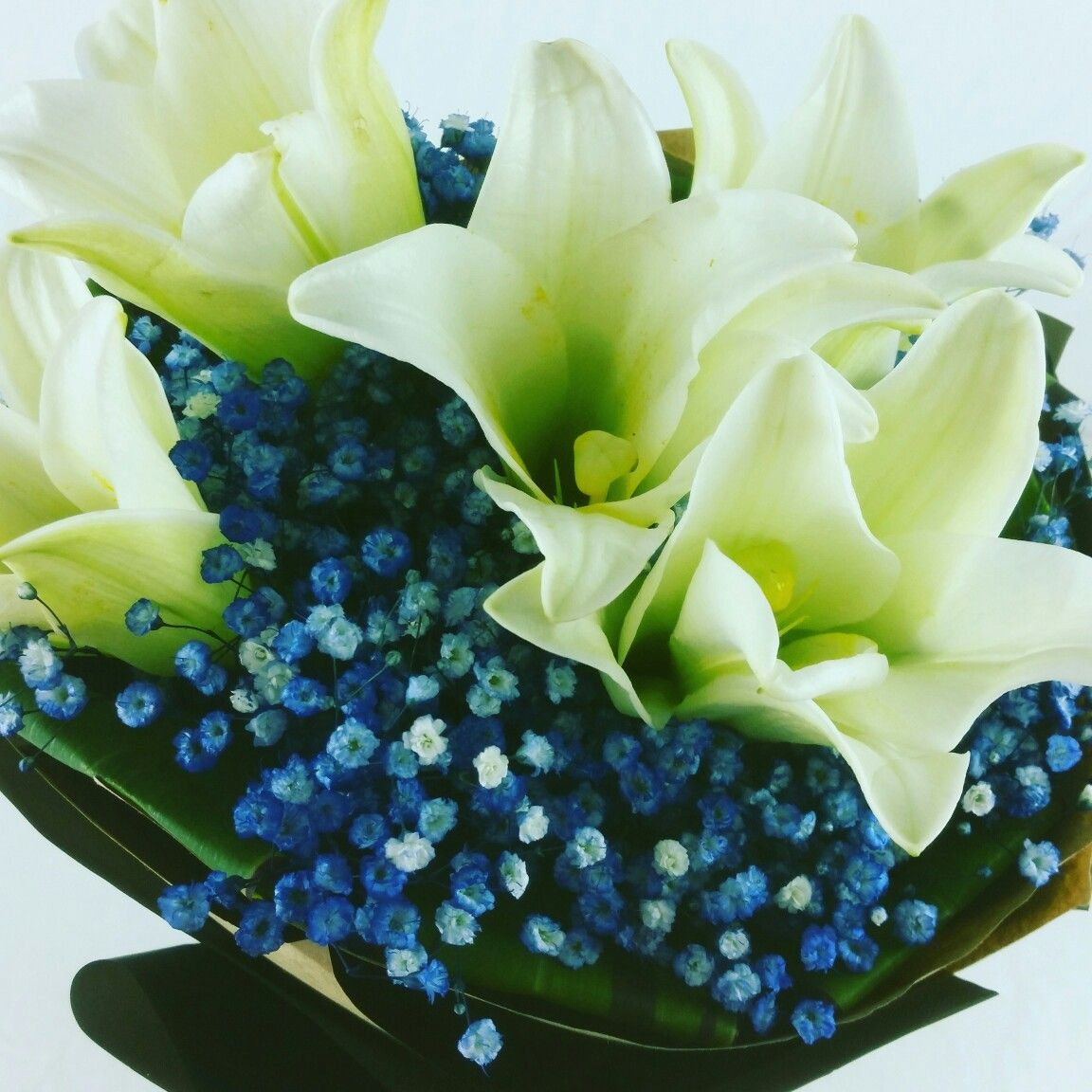 White and blue combine. Be relax. Free flower delivery