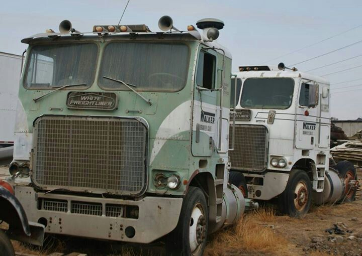 Powerliners White Freightliners With Huge Grill For The Bigg Power They Had Old Trucks My