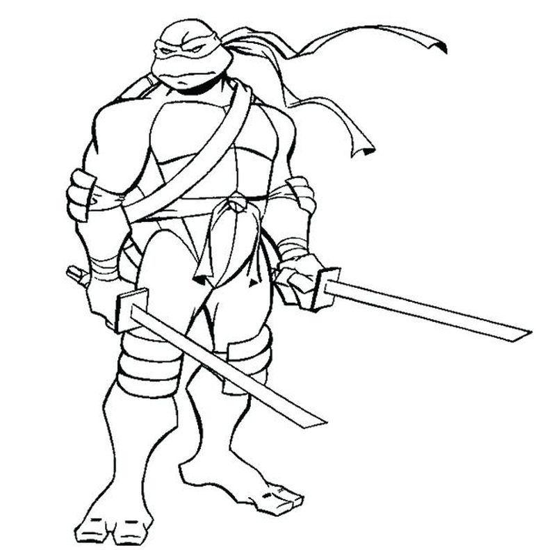 Talena Ninja Turtle Coloring Pages Ninja Turtle