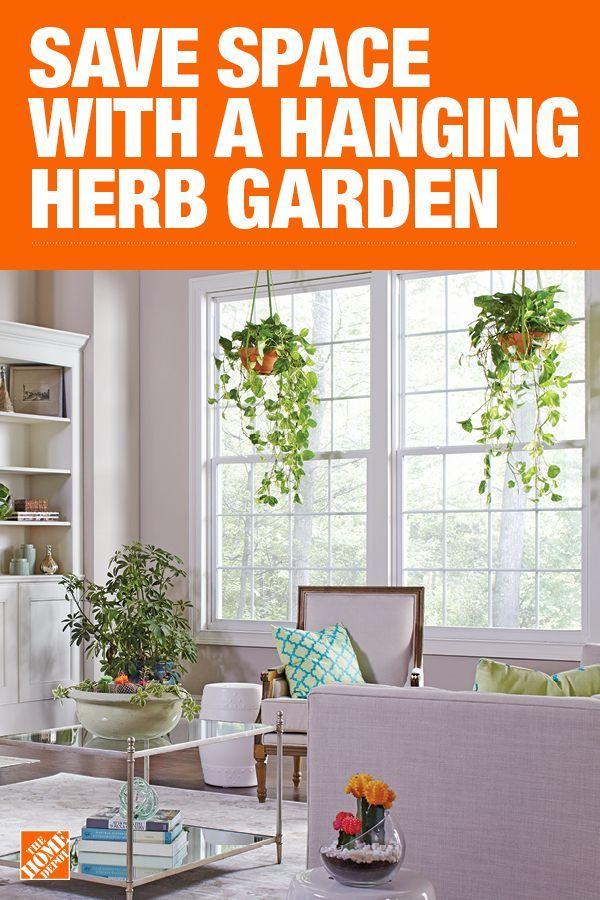 Hanging Herb Garden Hanging herbs, Hanging herb gardens