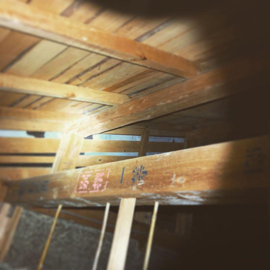 セルフリフォーム中の和室 天井を覗いてみる スケルトンにしたい