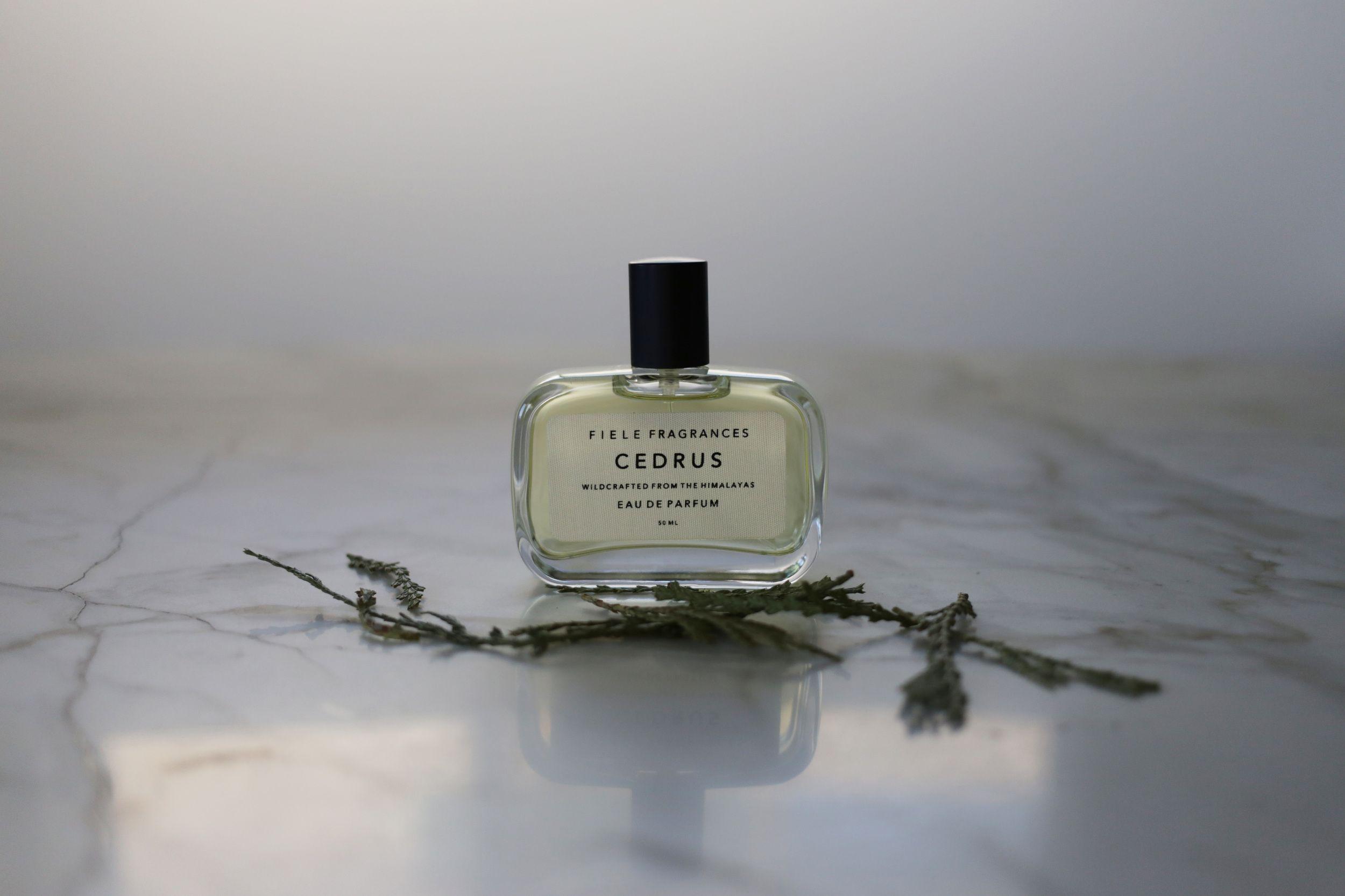 Cedrus | Fiele Fragrances