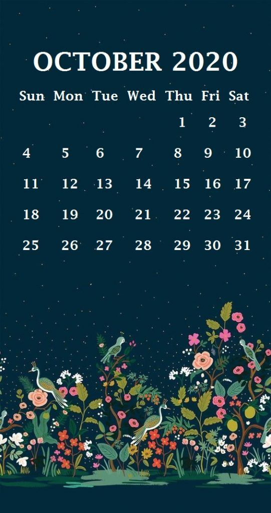 iPhone October 2020 Calendar Wallpaper Calendar