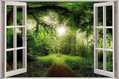 3d effect window view tree nature forest road sticker wall for Par la fenetre ouverte bonjour