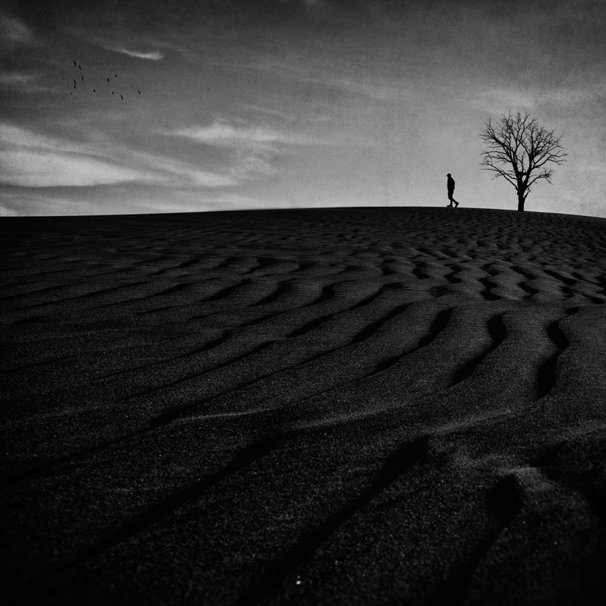 Coming Back to Life by Ahmed M. Abdulazim ~