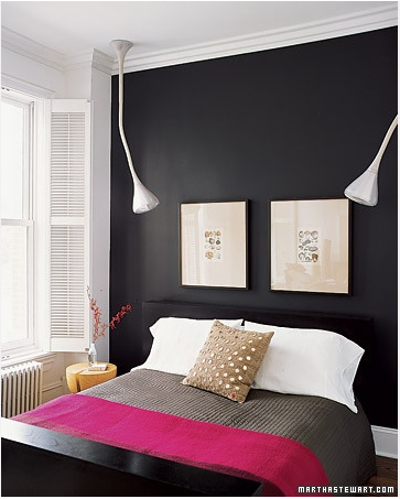 Accent Walls For Bedrooms