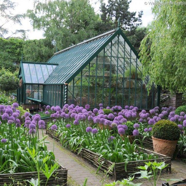 Bordura nocciolo bordure per orto ed aiuole fioriere e for Idee fioriere giardino