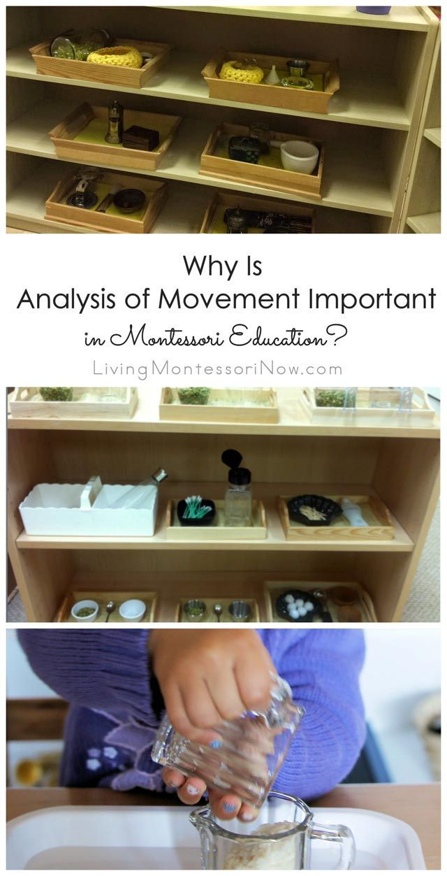 Why Is Analysis of Movement Important in Montessori Education