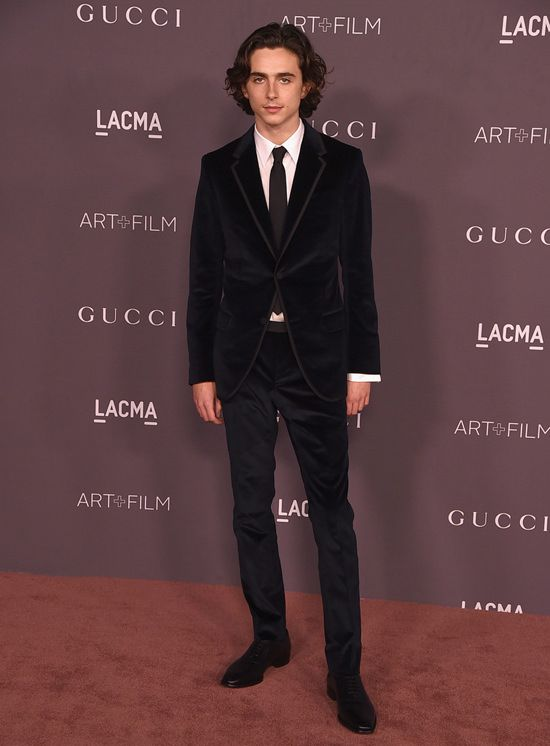 b046f137807246 Timothée Chalamet in Gucci | hot guys in 2019 | Timothee chalamet, Beautiful  boys, Fashion