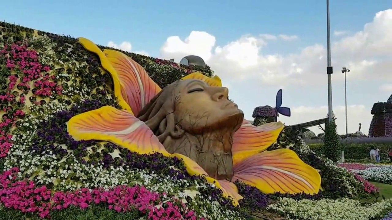 Dubai Miracle Garden 2016-2017   FLOWERS AND GARDENING   Pinterest ...