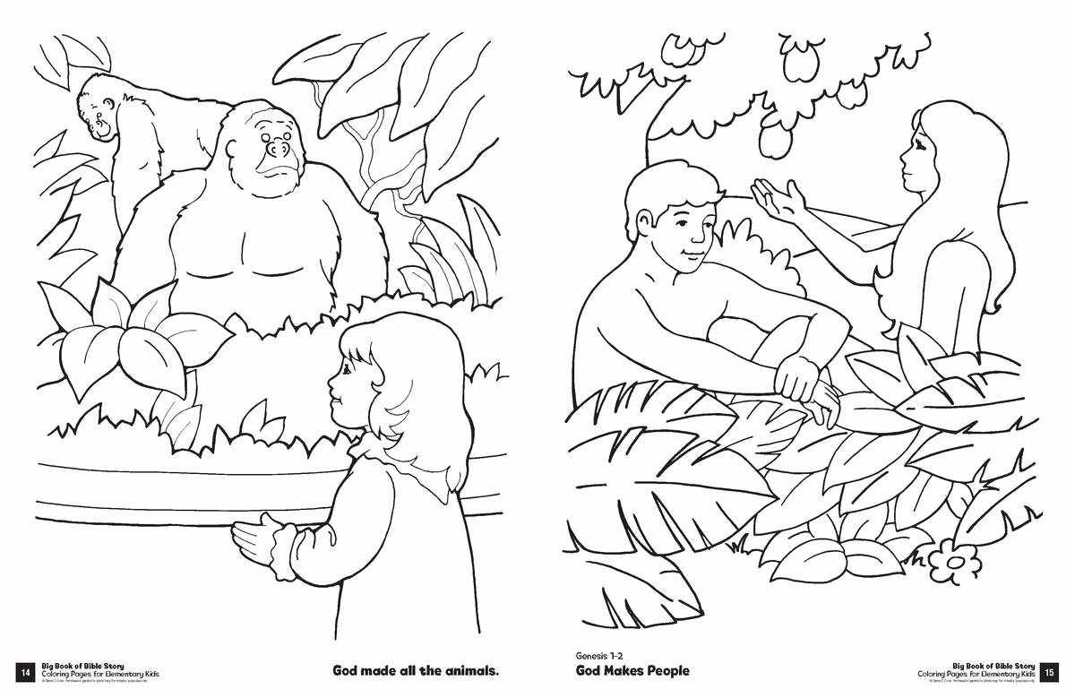 Science Coloring Pages for Kindergarten in 2020 | Bible ...