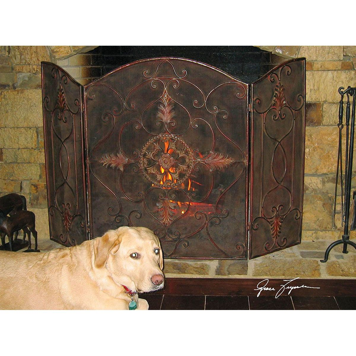 Groovy Uttermost Egan Wrought Iron Fireplace Screen 20508 Home Interior And Landscaping Ologienasavecom