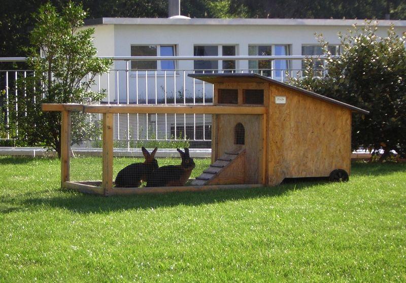 Ganzjahres Kaninchenstall Fur Garten Kaninchenstall Kaninchen Meerschweinchenstall