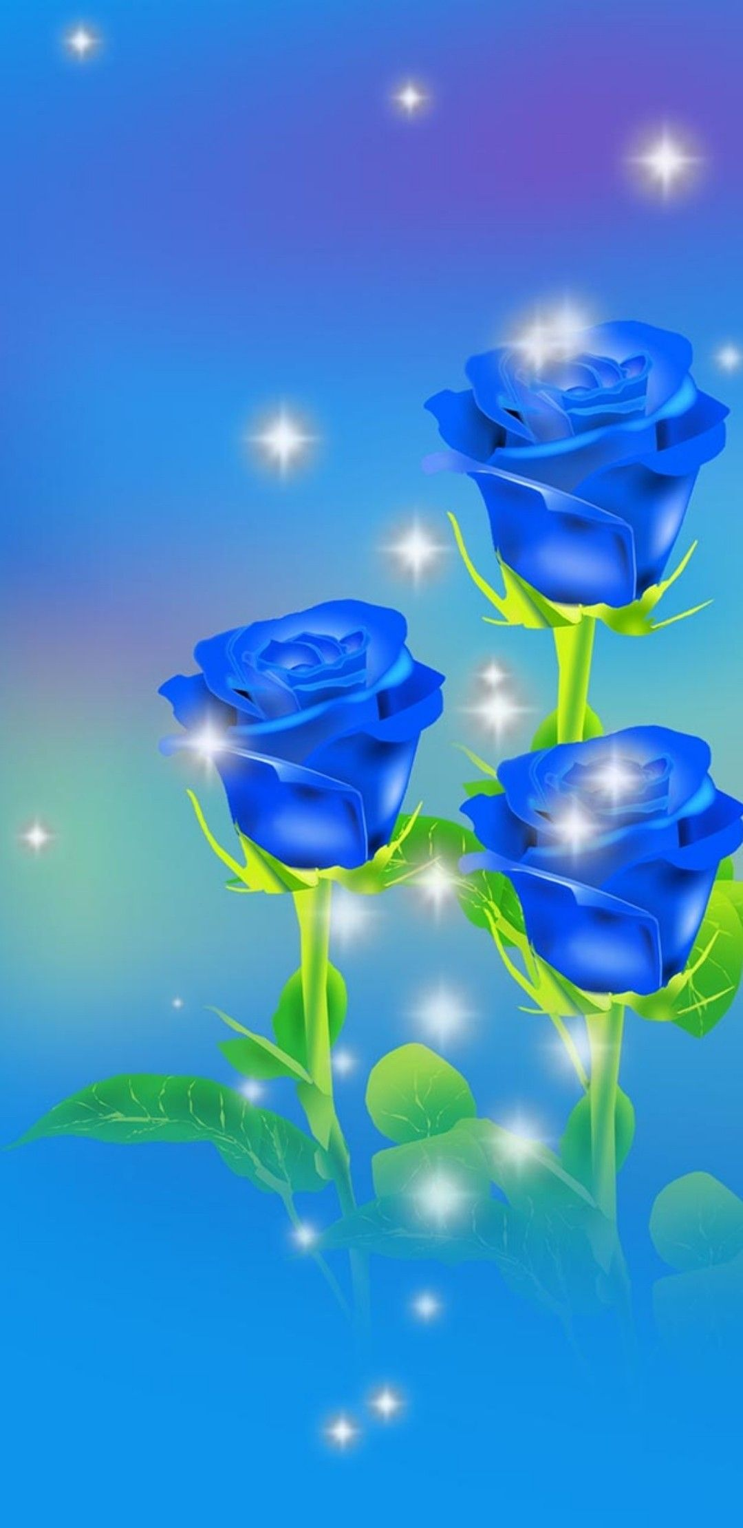 Beautiful Blue with 🌹 J Blue roses, Rose wallpaper