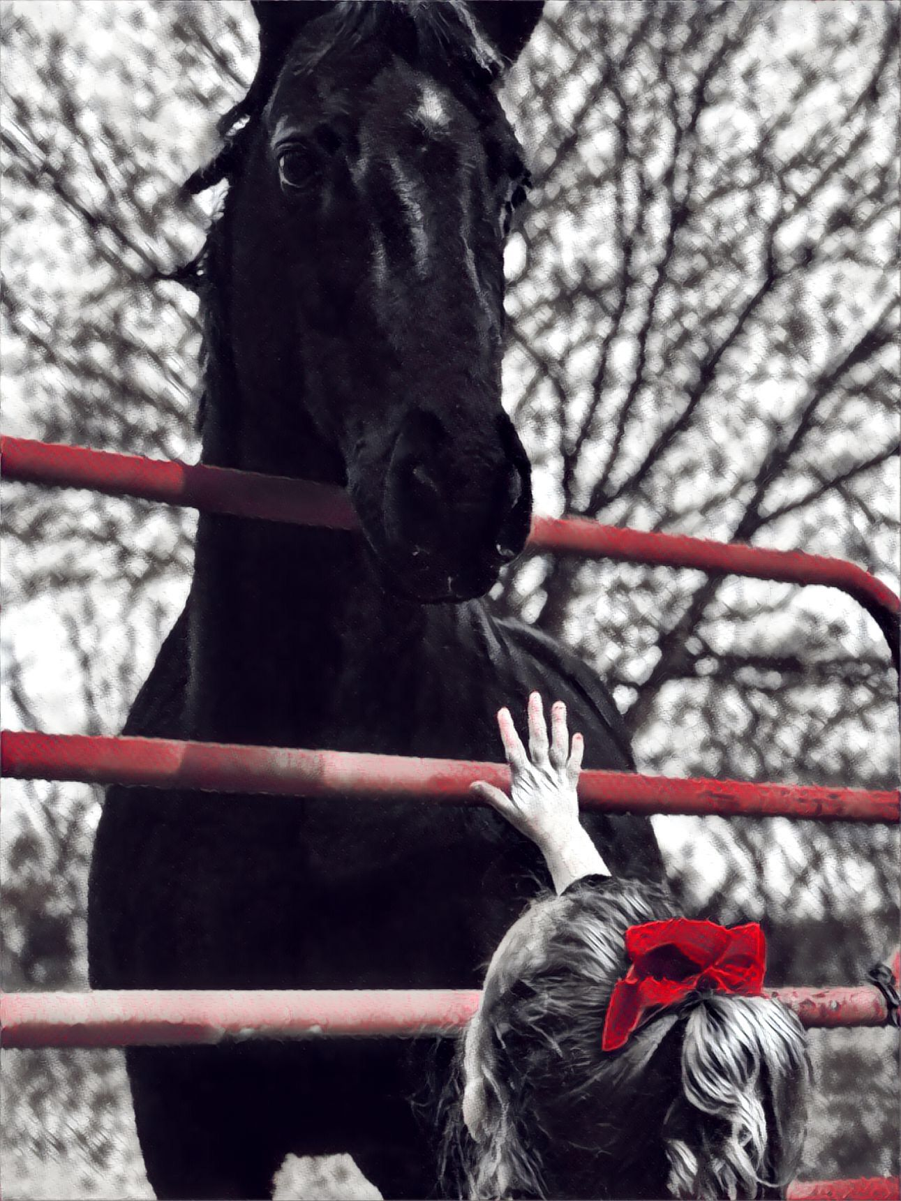 One of my favorites of my granddaughter and my horse