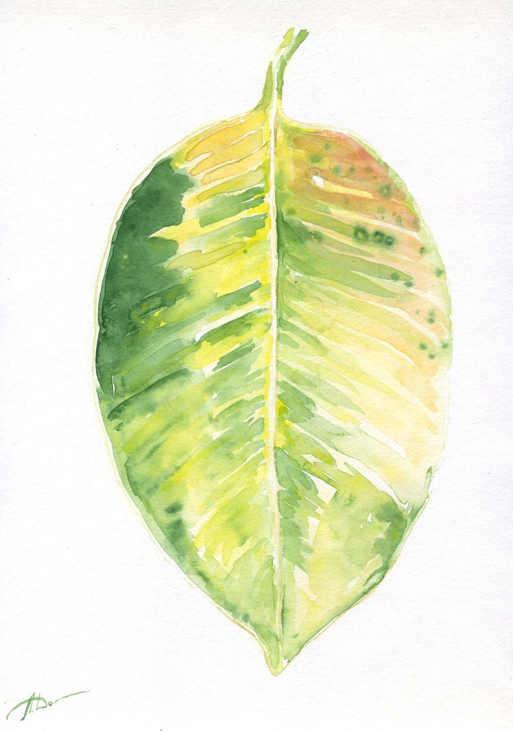 Watercolor minimalism plant wall art, ficus green and yellow leaf ...