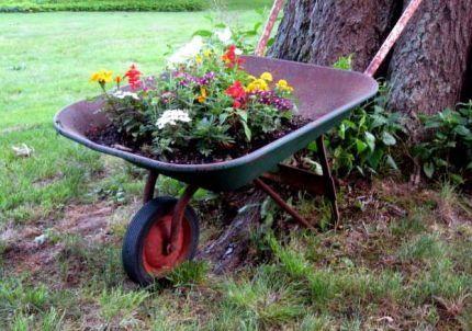Using An Old Wheelbarrow As A Planter Wheelbarrow Planter