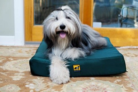 Tuff Orthopedic Dog Bed Orthopedic Dog Bed Orthopedic Dog Chew Proof Dog Bed