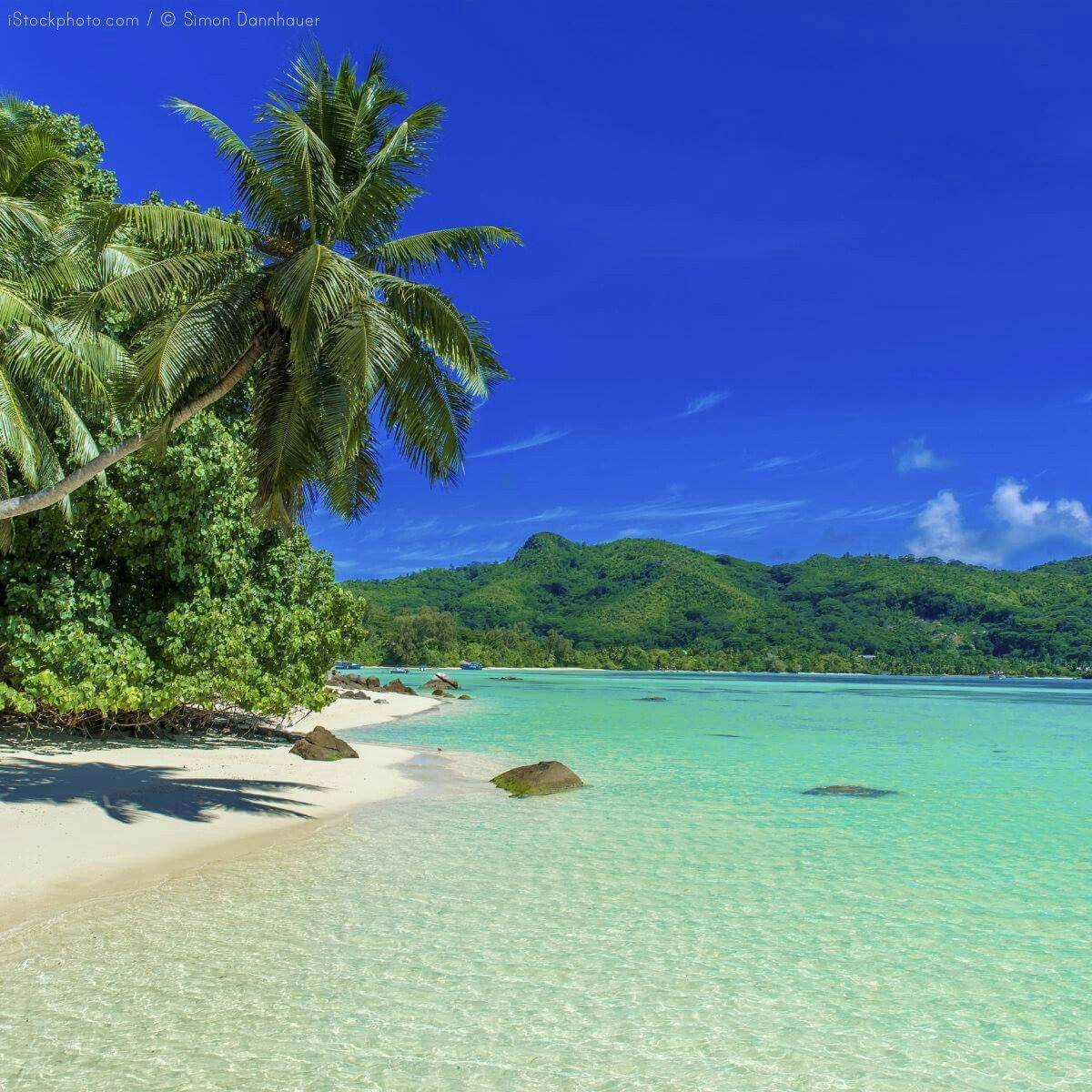 Seychelles Island Beaches: Seychelles, Seychelles Islands, Beach