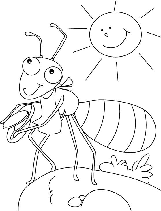 Ant coloring page summer program