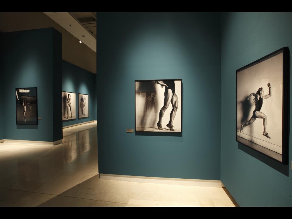 Helmut Newton. Sex & Landscapes - LA MAISON REBELLE
