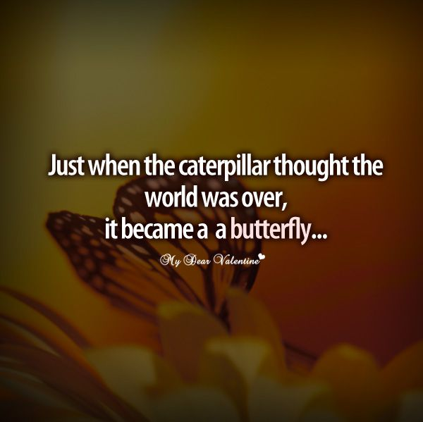 Just When The Caterpillar Thought The World Was Over It Become A Butterfly Funny Quotes Super Funny Quotes Inspirational Quotes