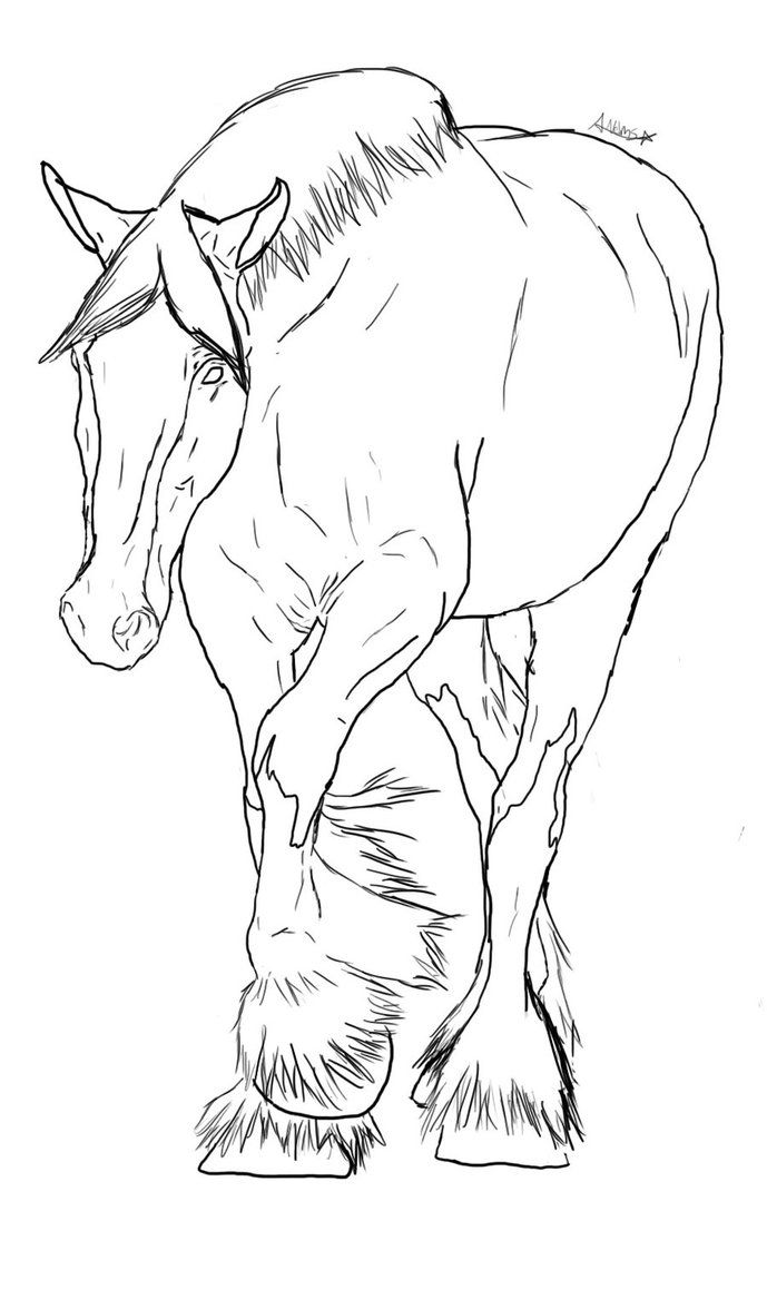 Clydesdale Lineart By Fotonovelic On Deviantart Horse Coloring Pages Horse Drawings Horse Coloring Books