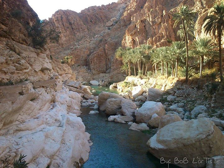 Mchouneche - Biskra - Algérie